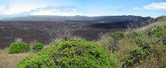 Volcano Sierra Negra