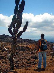 Sierra Negra: caldera