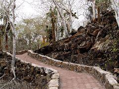 Il sentiero per Tortuga Beach