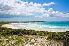 Playa Brava (Tortuga Beach)