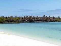Playa Mansa (Tortuga Beach)